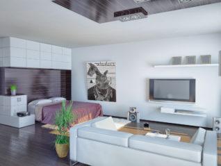 granny flat accessory dwelling unit