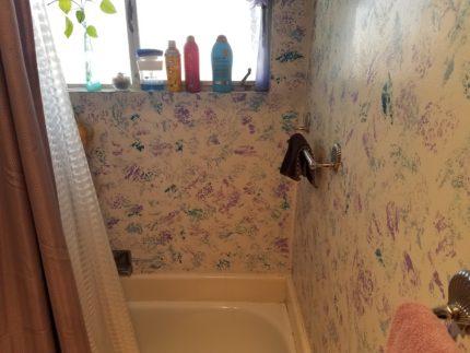 ovid place pre renovation shower